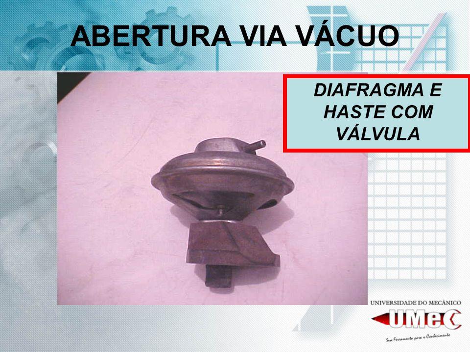 DIAFRAGMA E HASTE COM VÁLVULA