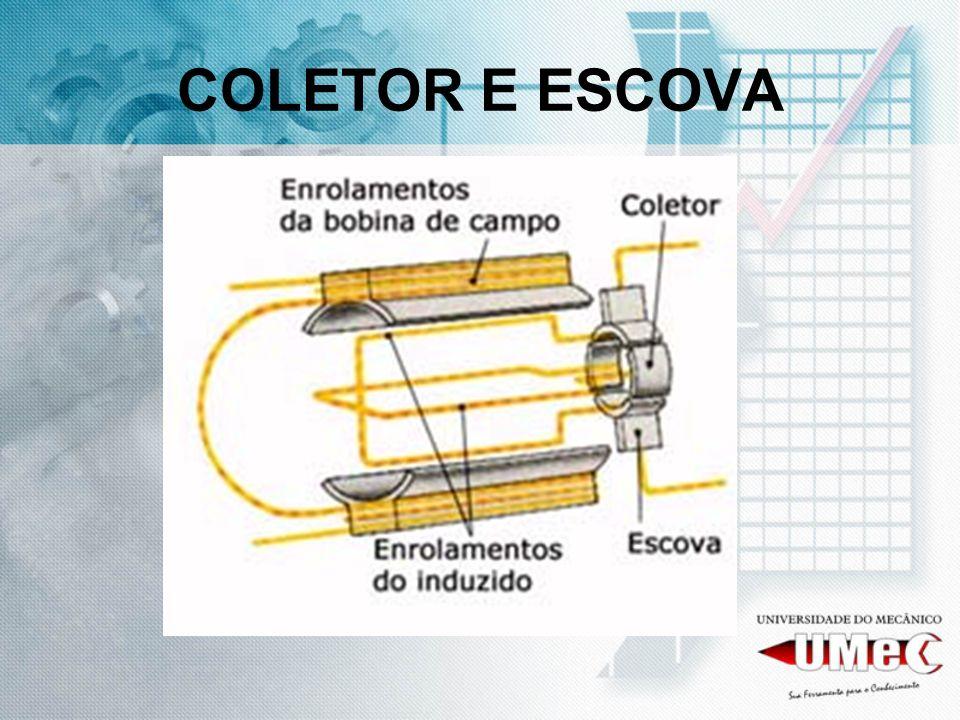COLETOR E ESCOVA