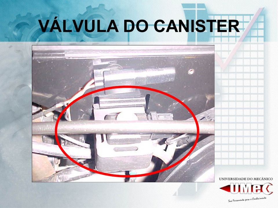 VÁLVULA DO CANISTER
