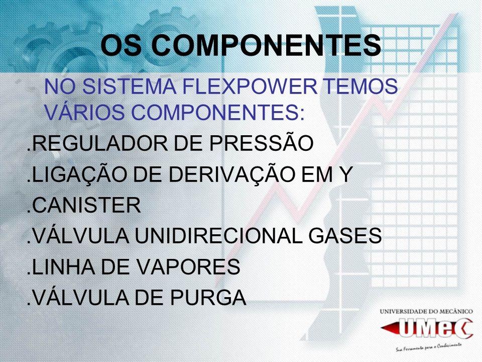 OS COMPONENTES NO SISTEMA FLEXPOWER TEMOS VÁRIOS COMPONENTES: