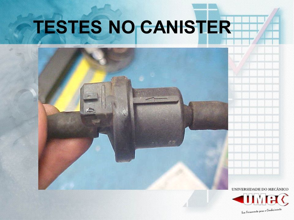 TESTES NO CANISTER