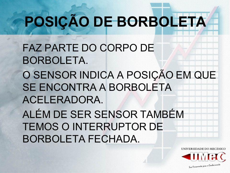 POSIÇÃO DE BORBOLETA FAZ PARTE DO CORPO DE BORBOLETA.