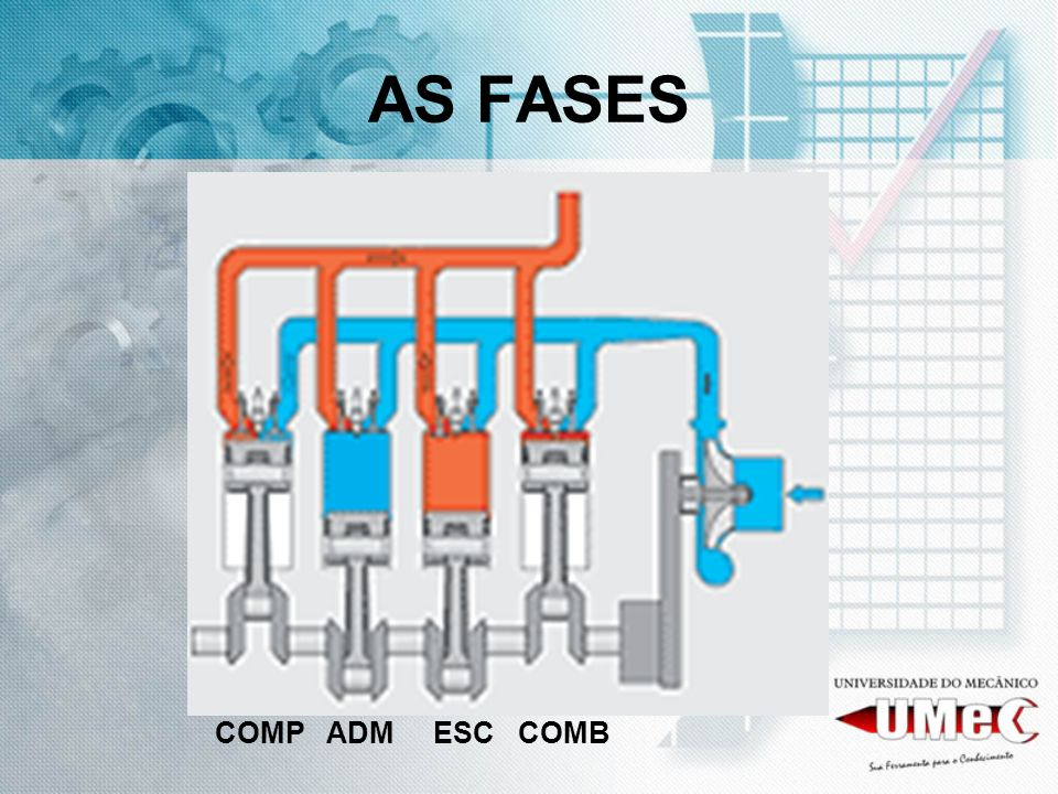AS FASES COMP ADM ESC COMB