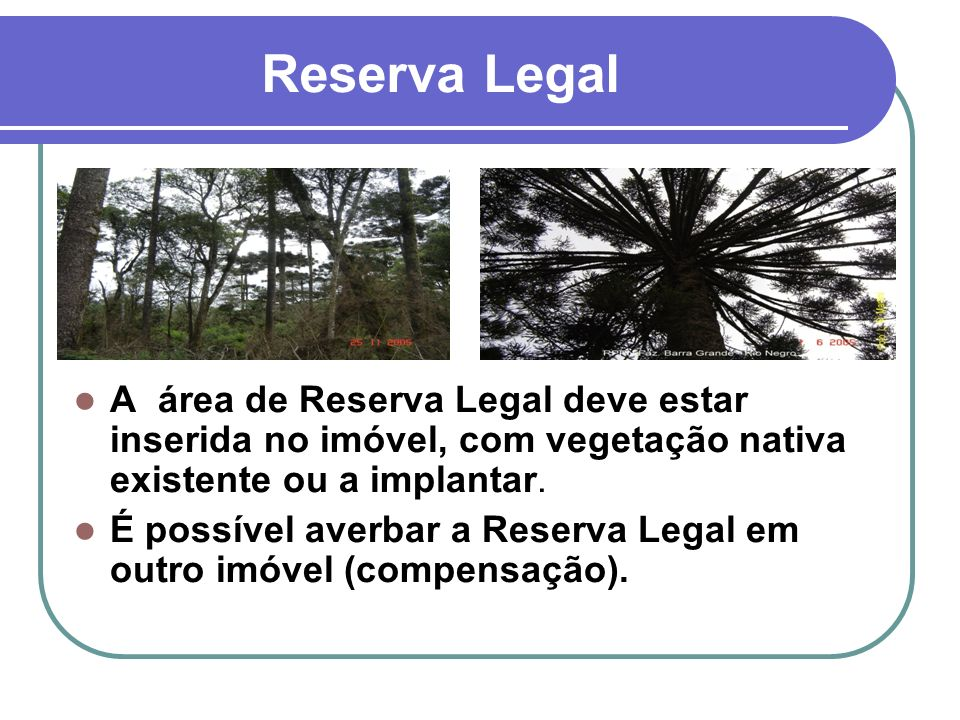 Reserva Legal A área de Reserva Legal deve estar inserida no imóvel, com vegetação nativa existente ou a implantar.