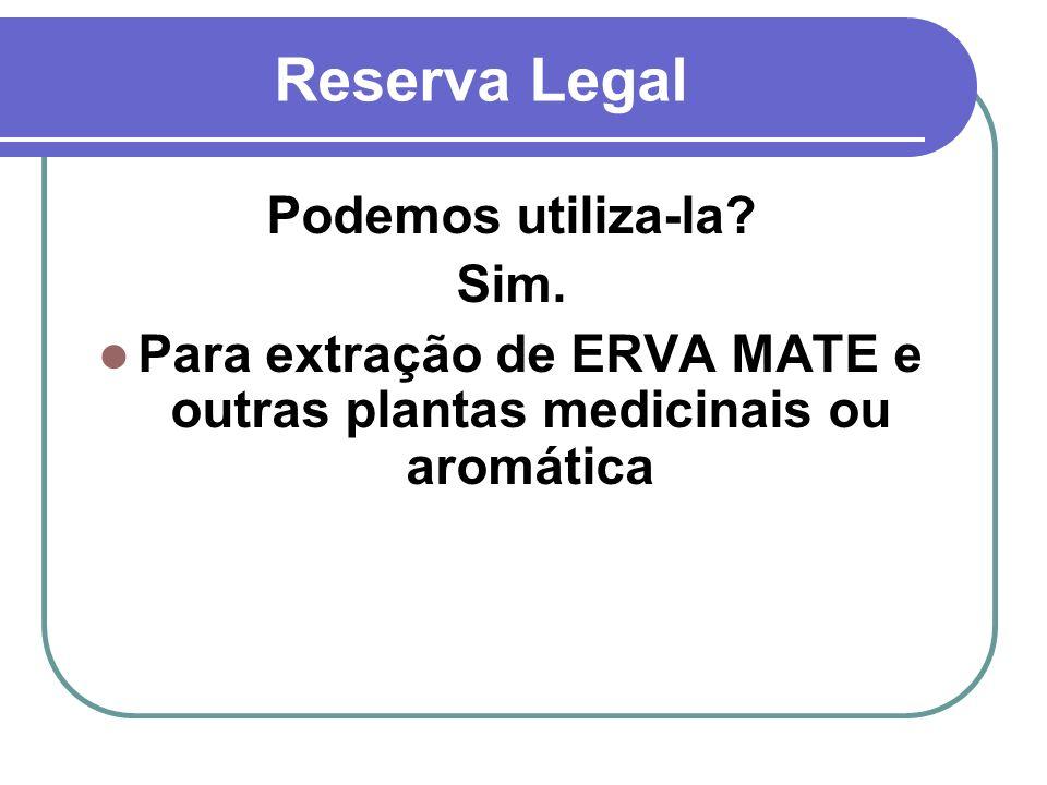Para extração de ERVA MATE e outras plantas medicinais ou aromática