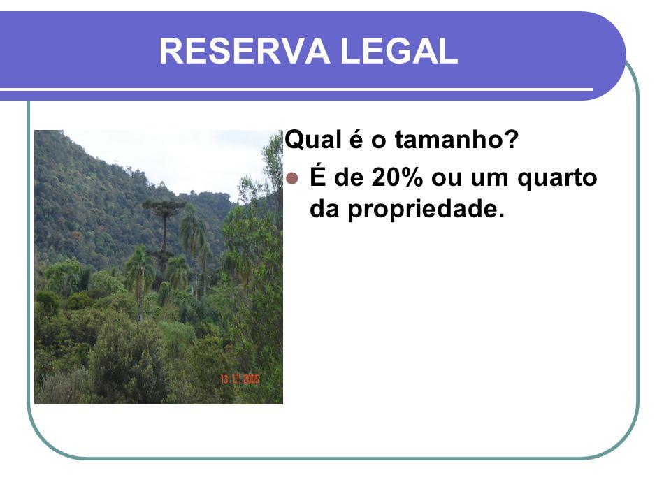 RESERVA LEGAL Qual é o tamanho É de 20% ou um quarto da propriedade.