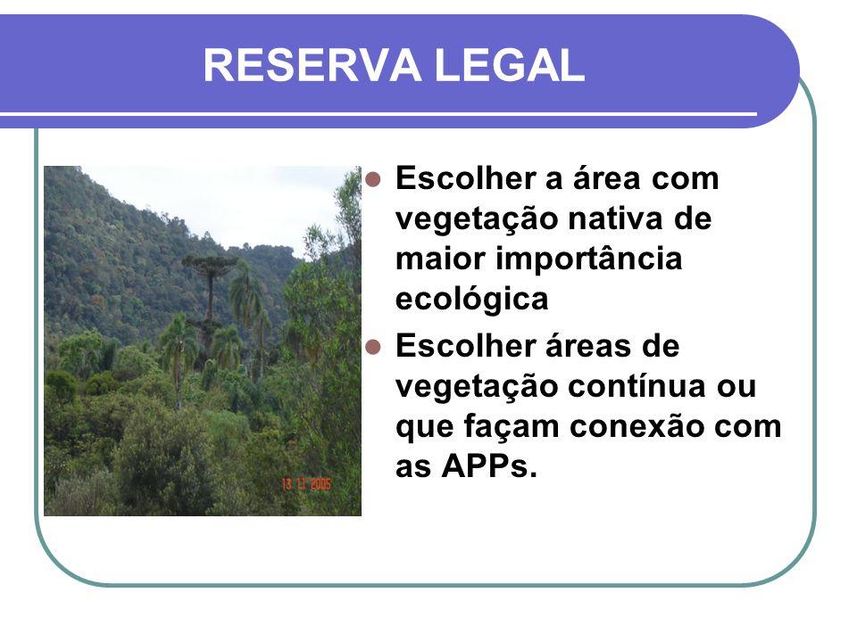 RESERVA LEGAL Escolher a área com vegetação nativa de maior importância ecológica.
