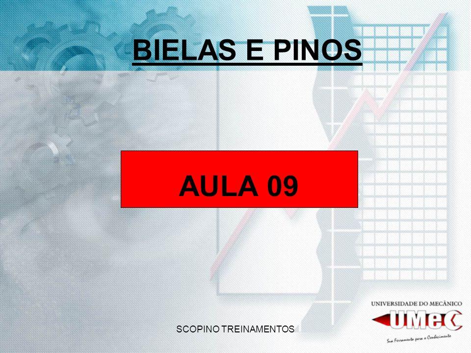 BIELAS E PINOS AULA 09 SCOPINO TREINAMENTOS