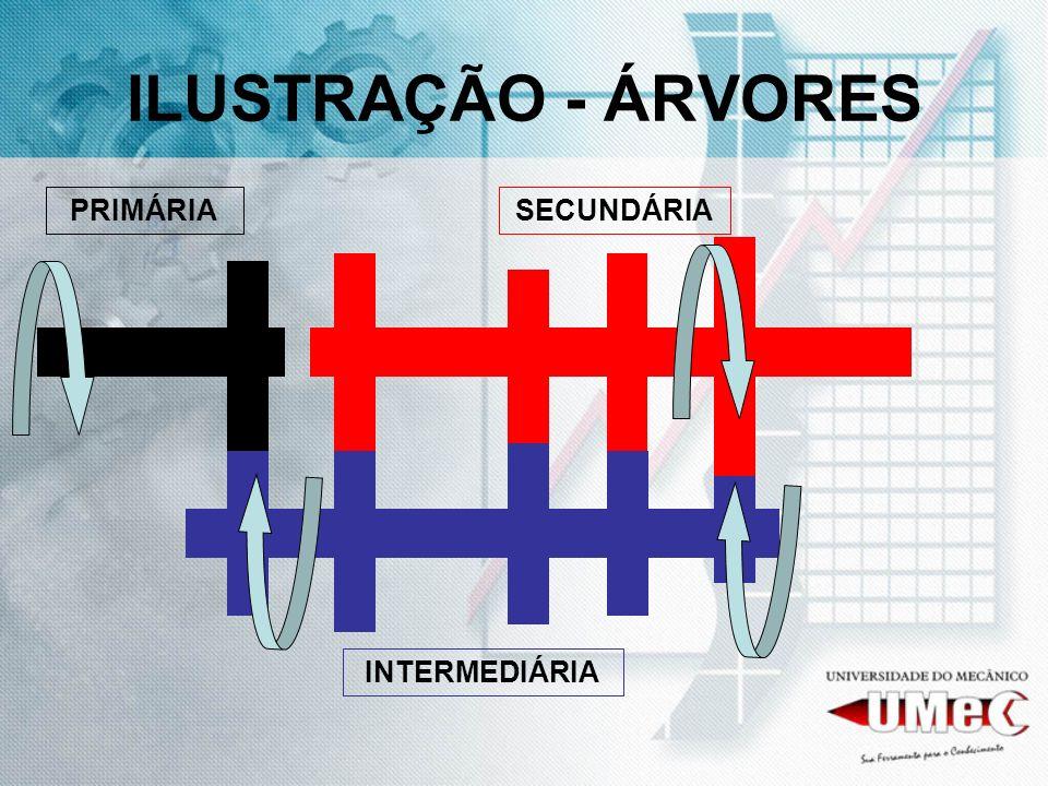 ILUSTRAÇÃO - ÁRVORES PRIMÁRIA SECUNDÁRIA INTERMEDIÁRIA