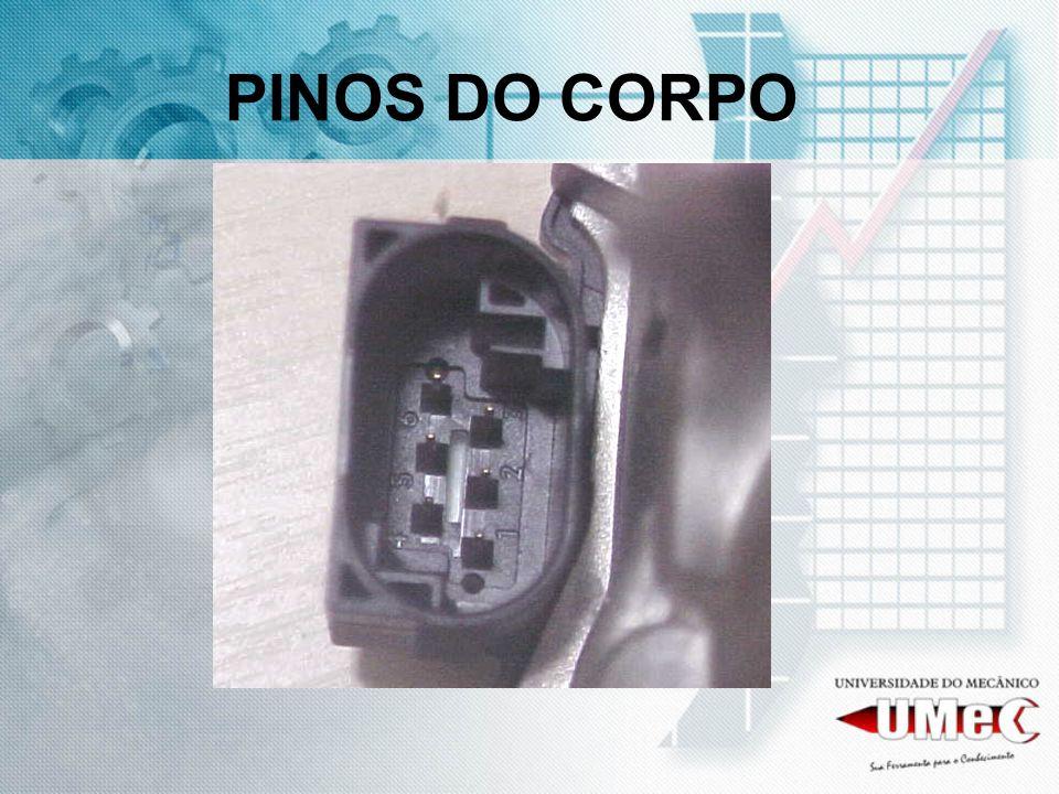 PINOS DO CORPO