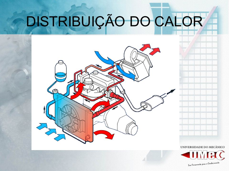 DISTRIBUIÇÃO DO CALOR