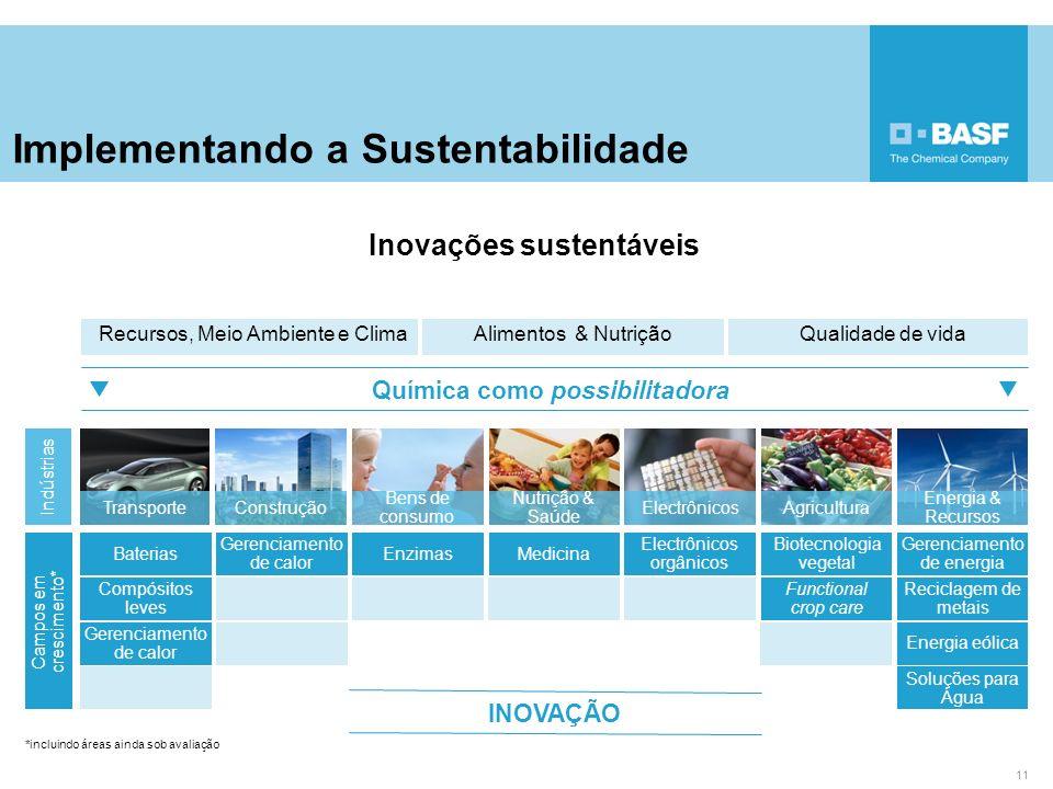 Implementando a Sustentabilidade