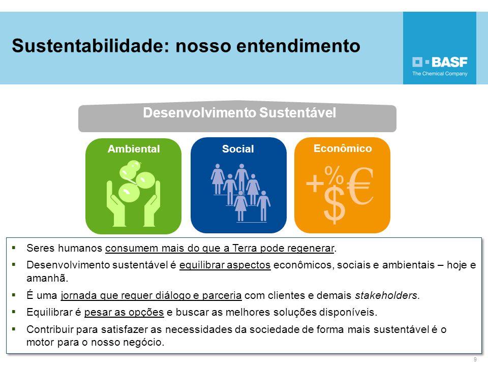 € $ + % Sustentabilidade: nosso entendimento