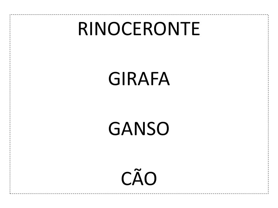 RINOCERONTE GIRAFA GANSO CÃO