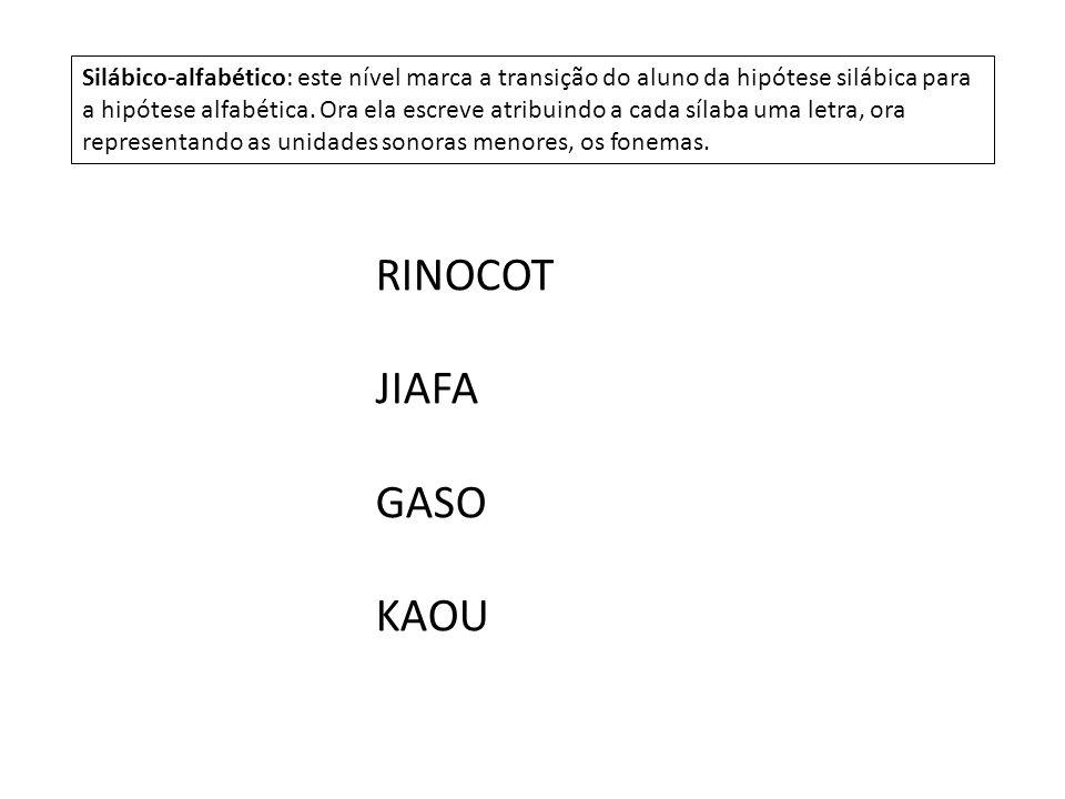 RINOCOT JIAFA GASO KAOU