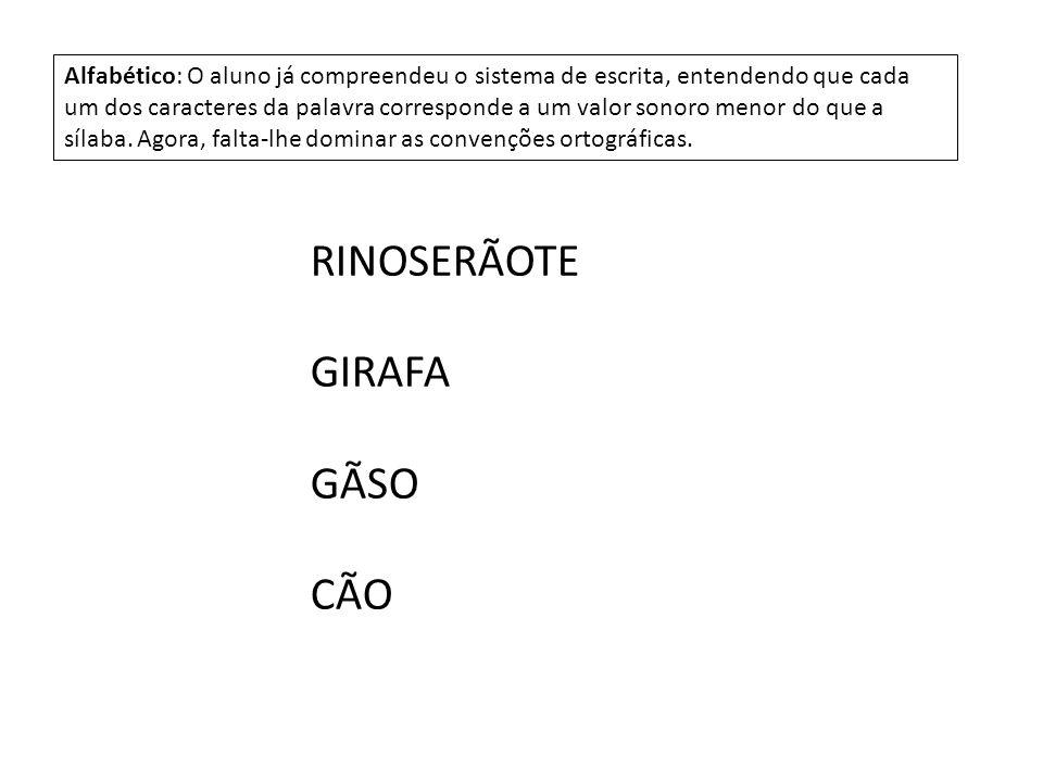 RINOSERÃOTE GIRAFA GÃSO CÃO