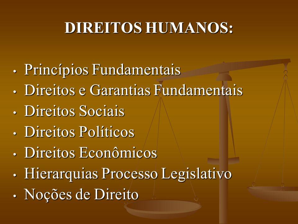 DIREITOS HUMANOS: Princípios Fundamentais. Direitos e Garantias Fundamentais. Direitos Sociais. Direitos Políticos.