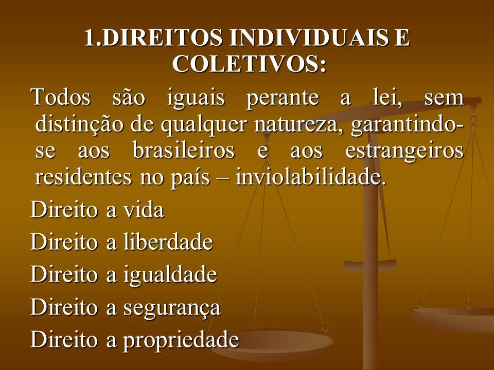 DIREITOS INDIVIDUAIS E COLETIVOS: