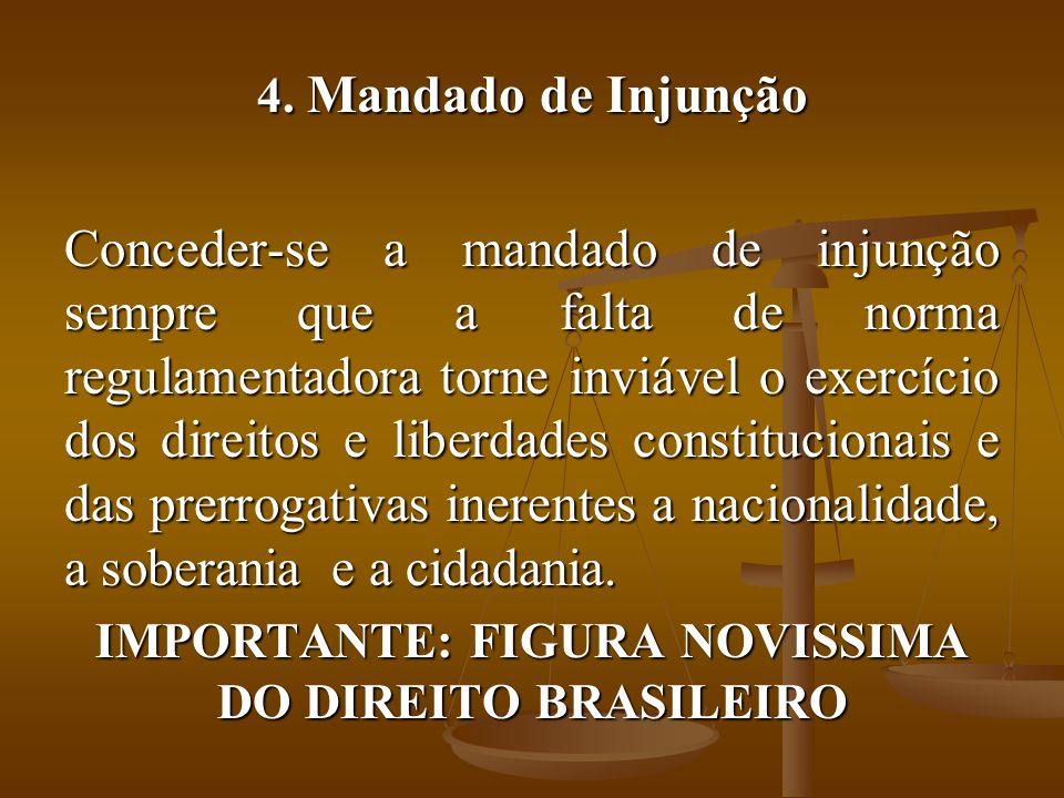 IMPORTANTE: FIGURA NOVISSIMA DO DIREITO BRASILEIRO