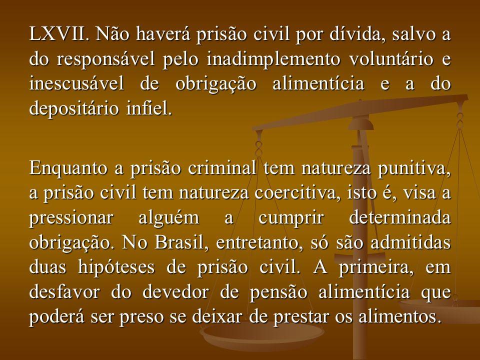 Não haverá prisão civil por dívida, salvo a do responsável pelo inadimplemento voluntário e inescusável de obrigação alimentícia e a do depositário infiel.