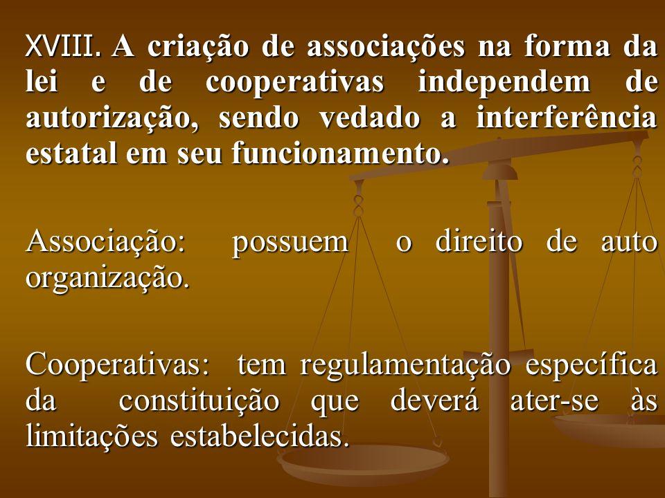 Associação: possuem o direito de auto organização.