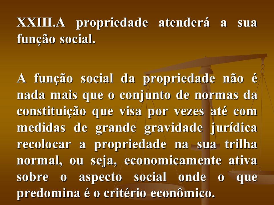 A propriedade atenderá a sua função social.
