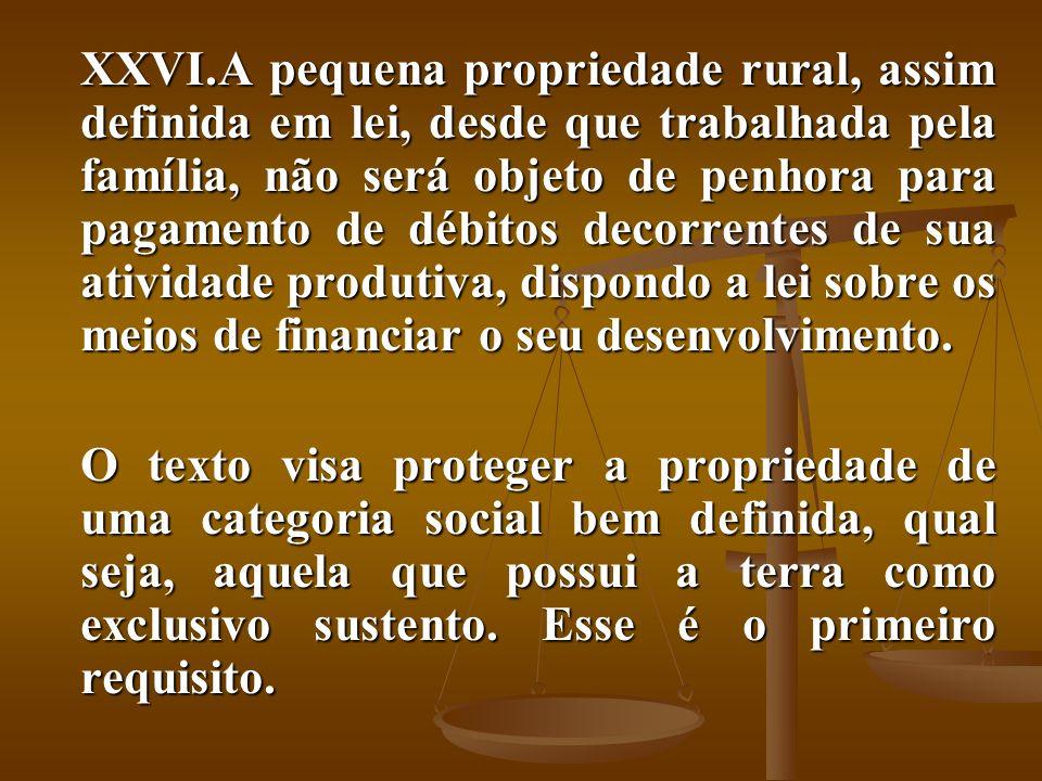 A pequena propriedade rural, assim definida em lei, desde que trabalhada pela família, não será objeto de penhora para pagamento de débitos decorrentes de sua atividade produtiva, dispondo a lei sobre os meios de financiar o seu desenvolvimento.