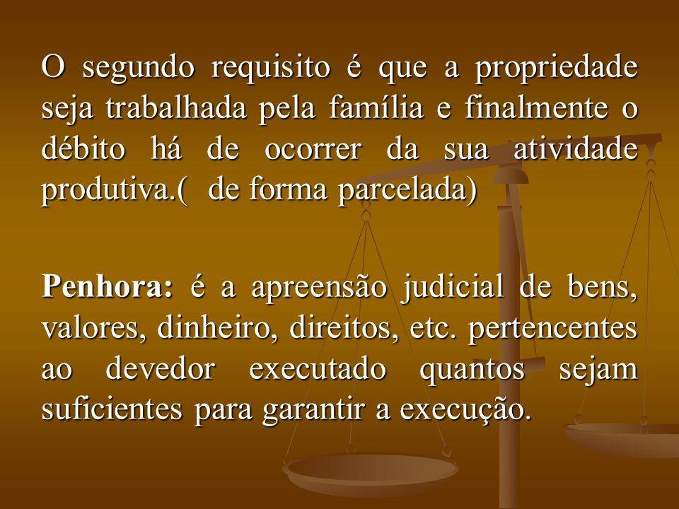 O segundo requisito é que a propriedade seja trabalhada pela família e finalmente o débito há de ocorrer da sua atividade produtiva.( de forma parcelada)