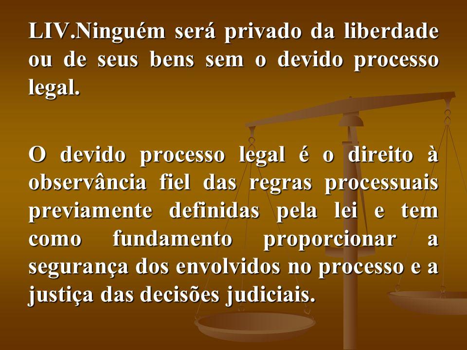Ninguém será privado da liberdade ou de seus bens sem o devido processo legal.