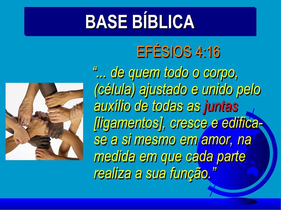 BASE BÍBLICA EFÉSIOS 4:16.