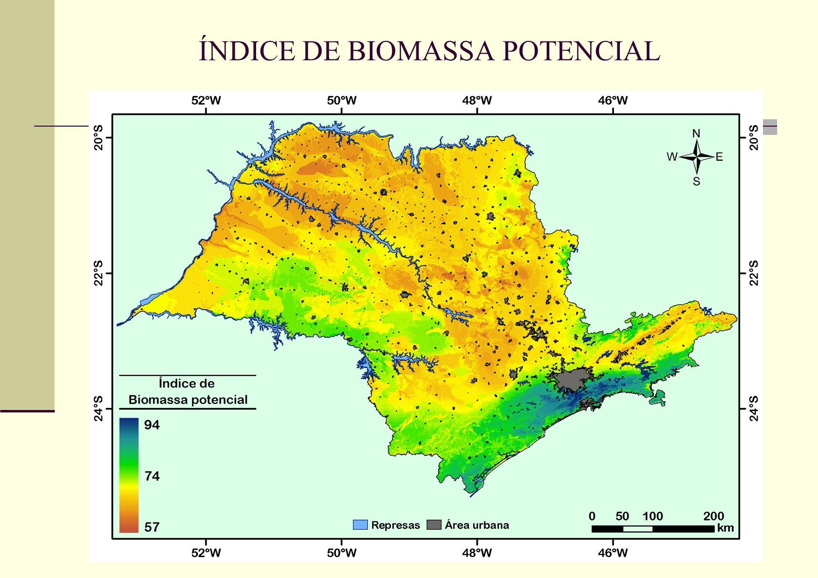 ÍNDICE DE BIOMASSA POTENCIAL