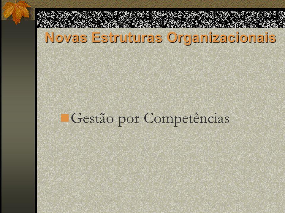 Novas Estruturas Organizacionais