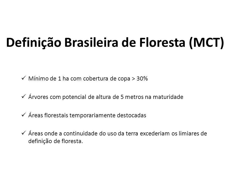 Definição Brasileira de Floresta (MCT)