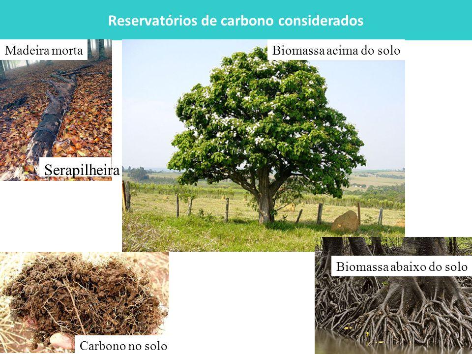 Reservatórios de carbono considerados
