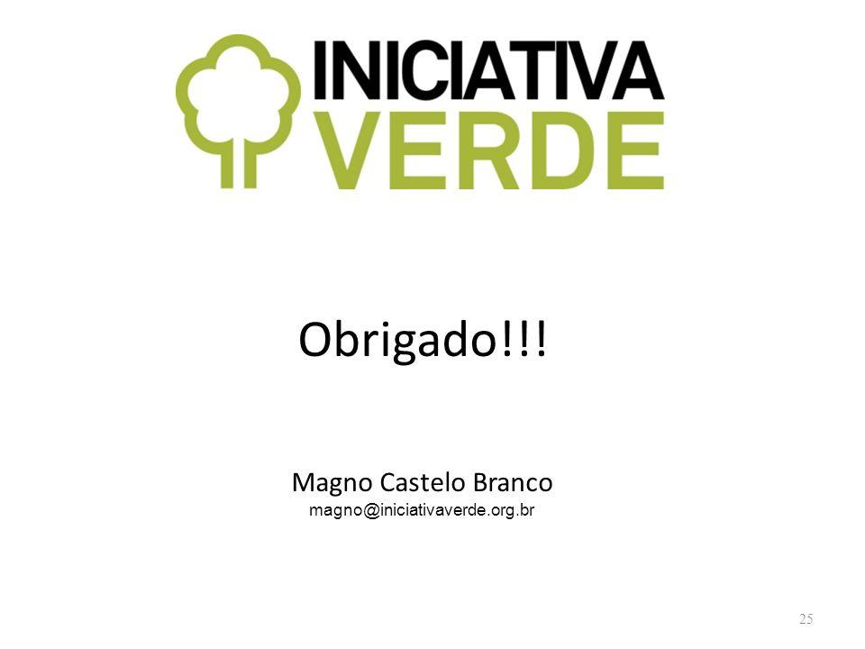 Obrigado!!! Magno Castelo Branco magno@iniciativaverde.org.br