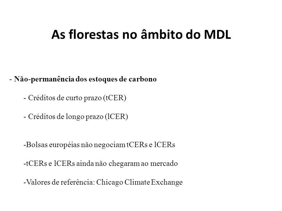 As florestas no âmbito do MDL