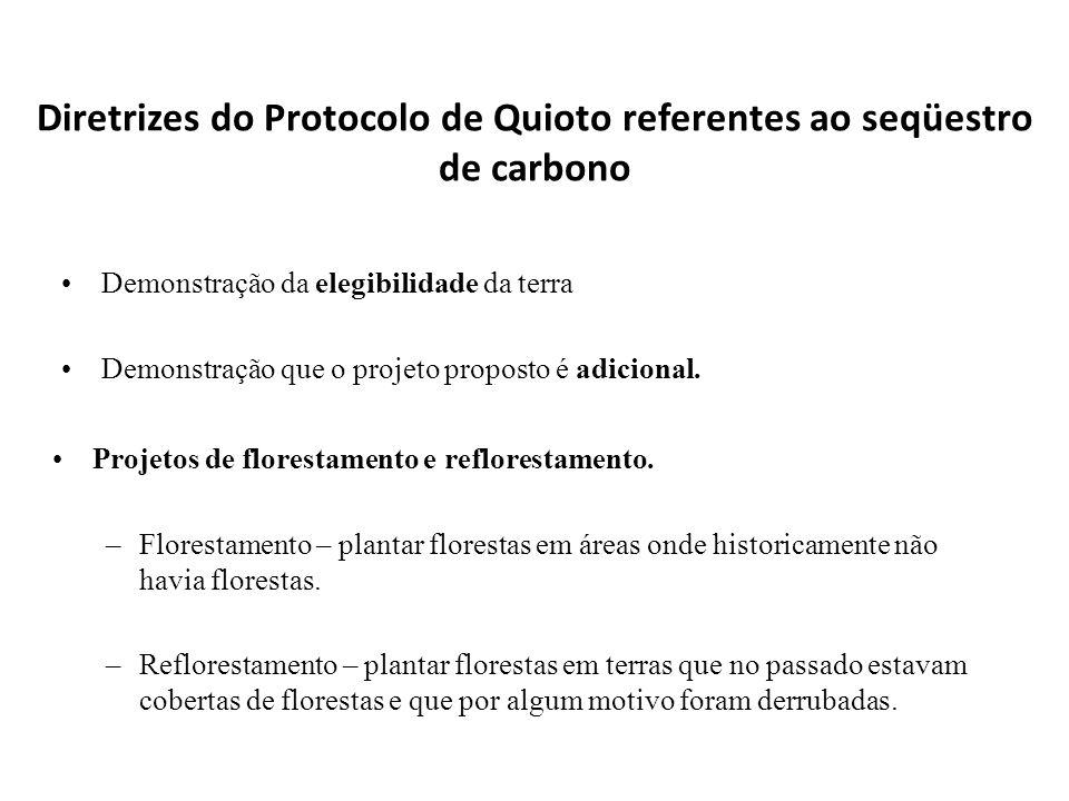 Diretrizes do Protocolo de Quioto referentes ao seqüestro de carbono