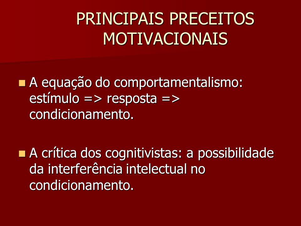 PRINCIPAIS PRECEITOS MOTIVACIONAIS