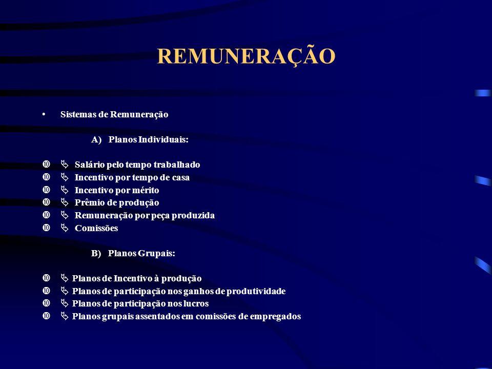 REMUNERAÇÃO Sistemas de Remuneração A) Planos Individuais: