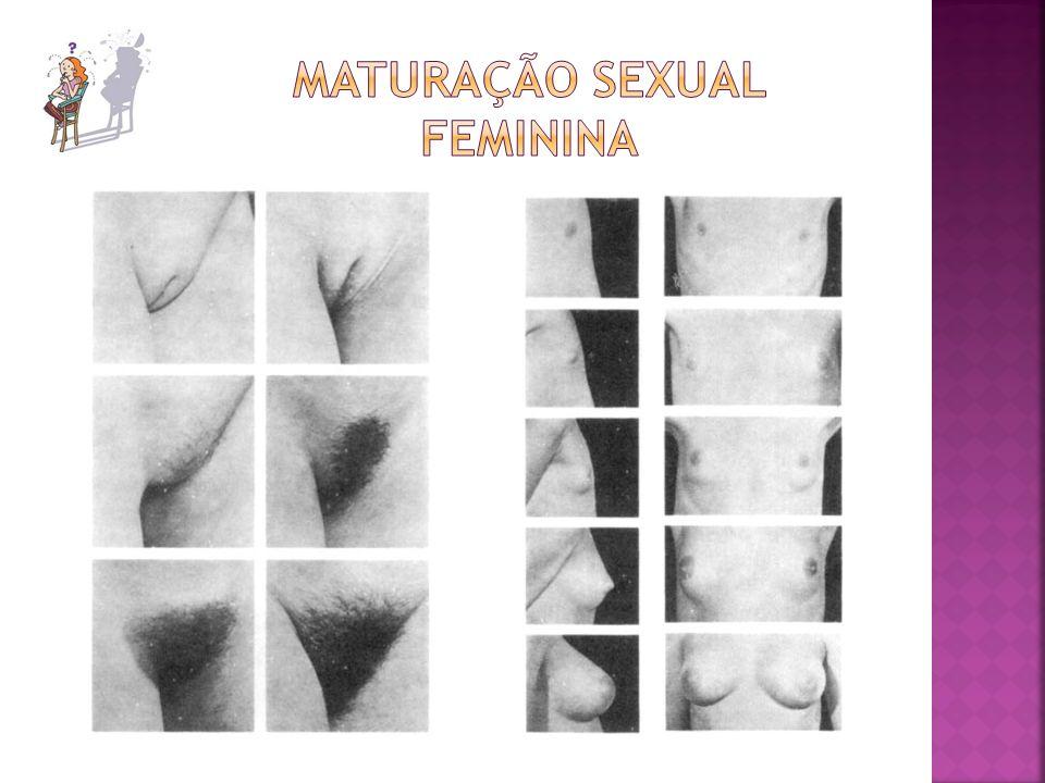 Maturação sexual feminina