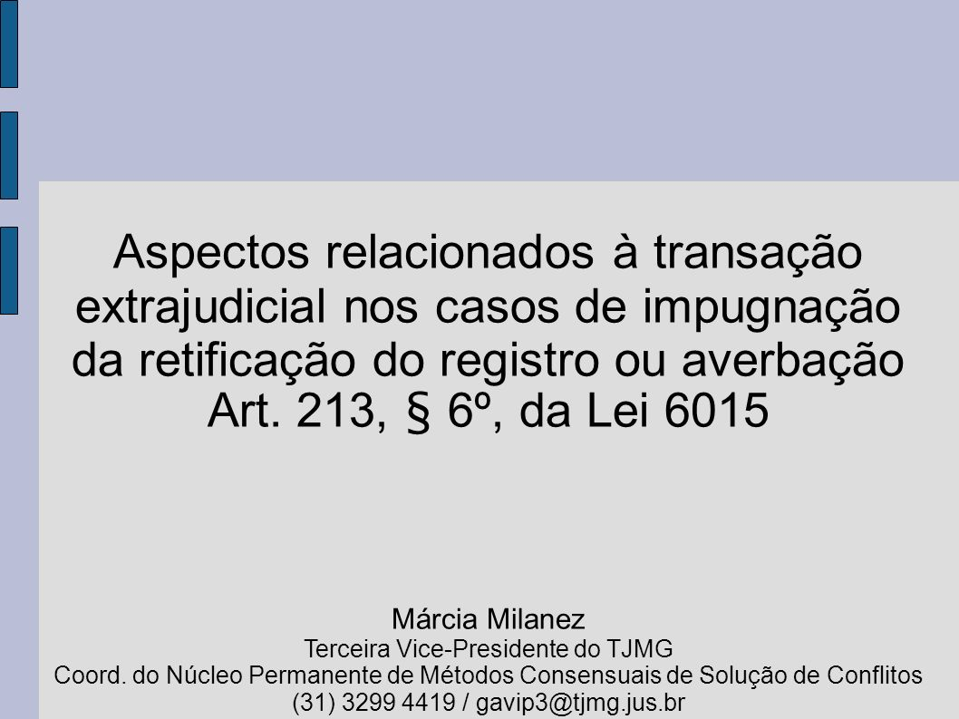 Terceira Vice-Presidente do TJMG