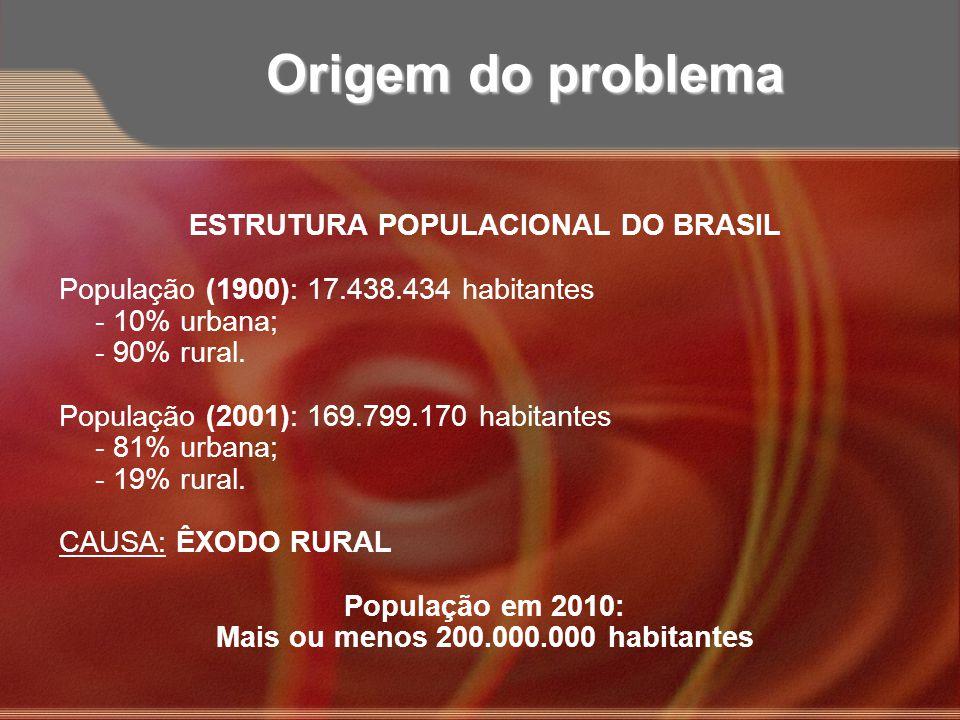 ESTRUTURA POPULACIONAL DO BRASIL Mais ou menos 200.000.000 habitantes