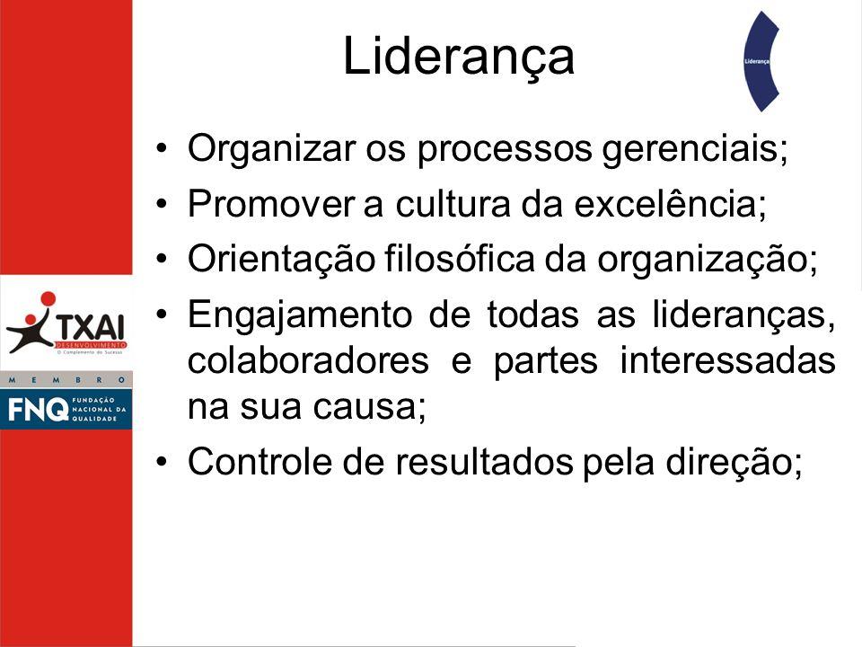 Liderança Organizar os processos gerenciais;