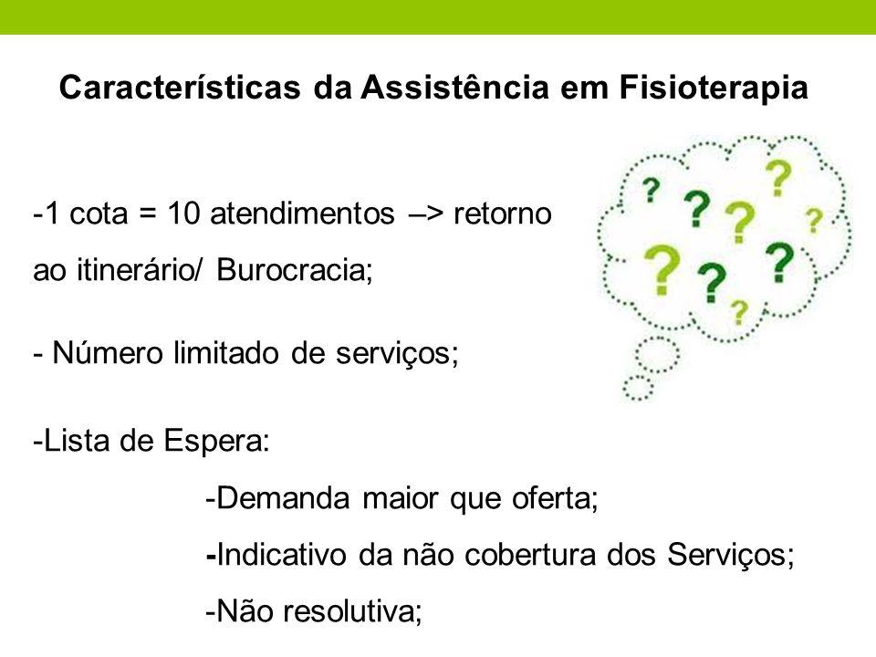 Características da Assistência em Fisioterapia