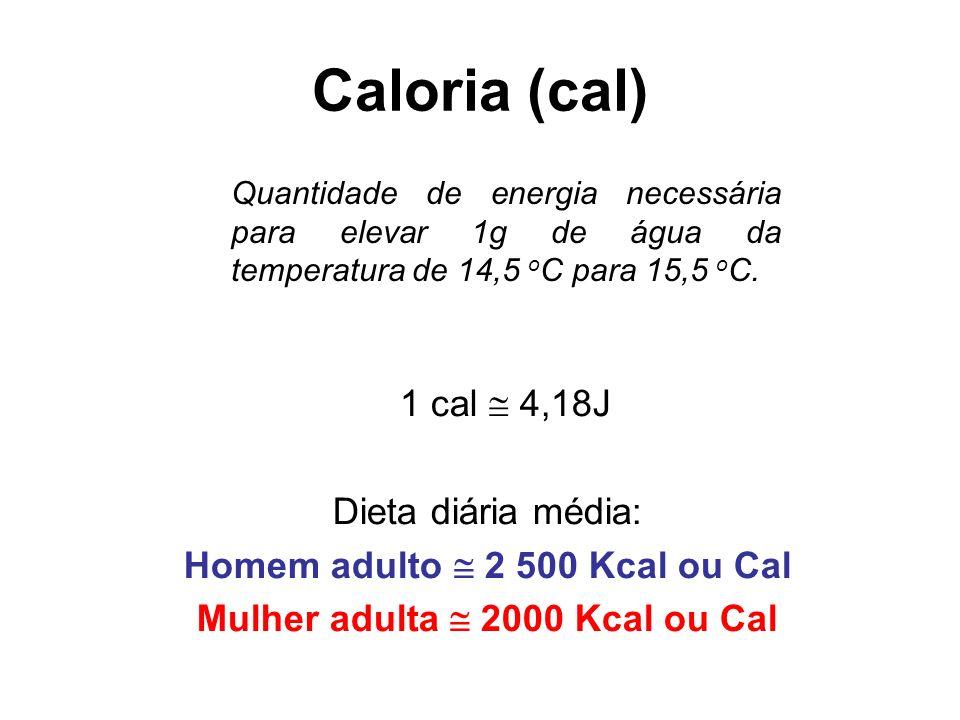 Homem adulto  2 500 Kcal ou Cal Mulher adulta  2000 Kcal ou Cal