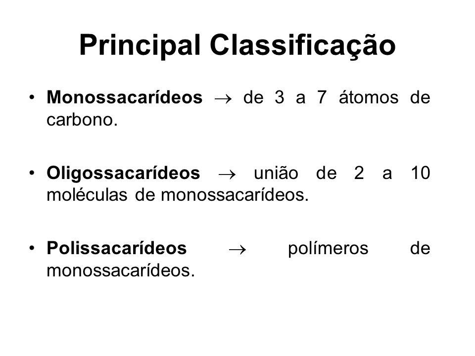 Principal Classificação