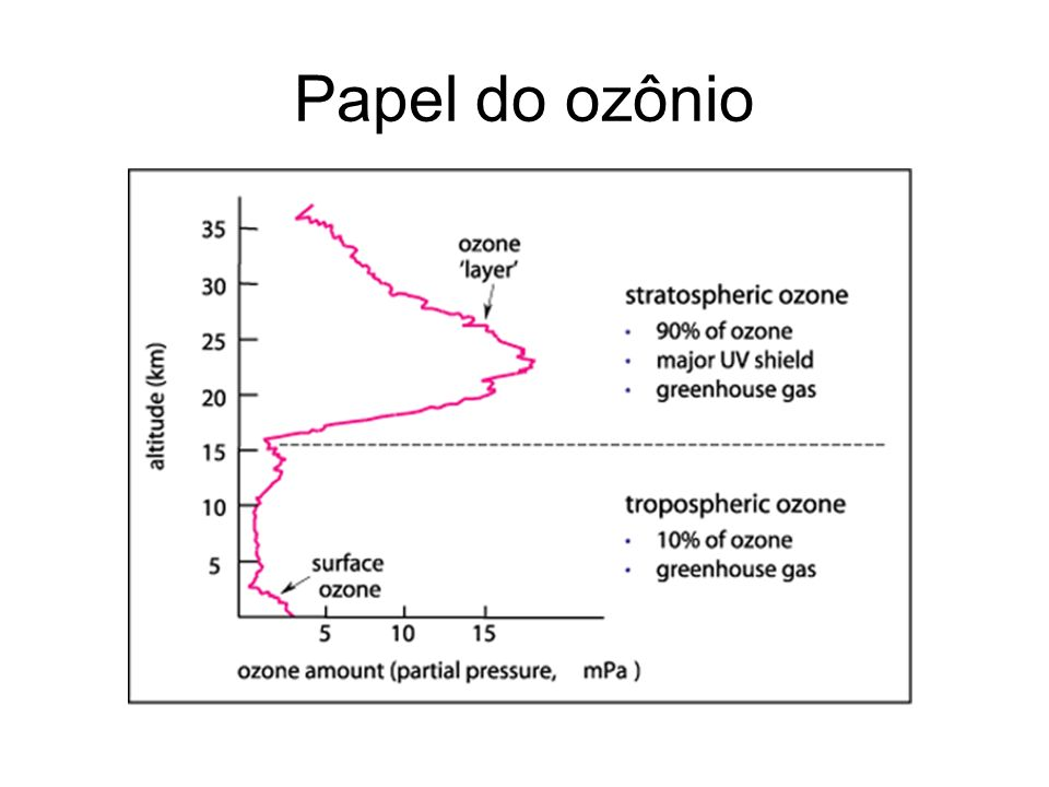 Papel do ozônio