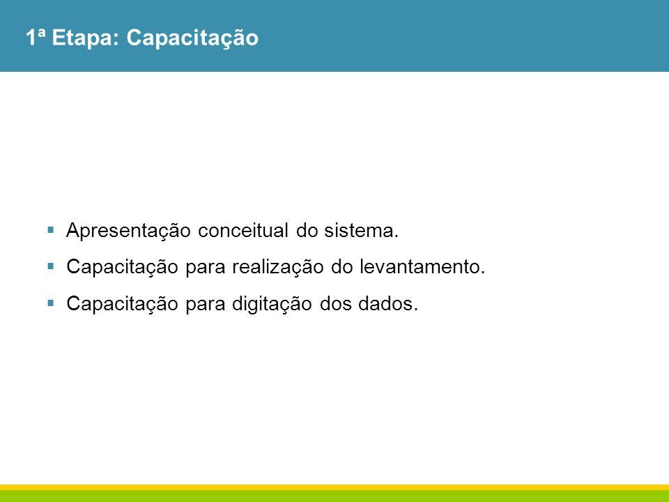 1ª Etapa: Capacitação Apresentação conceitual do sistema.