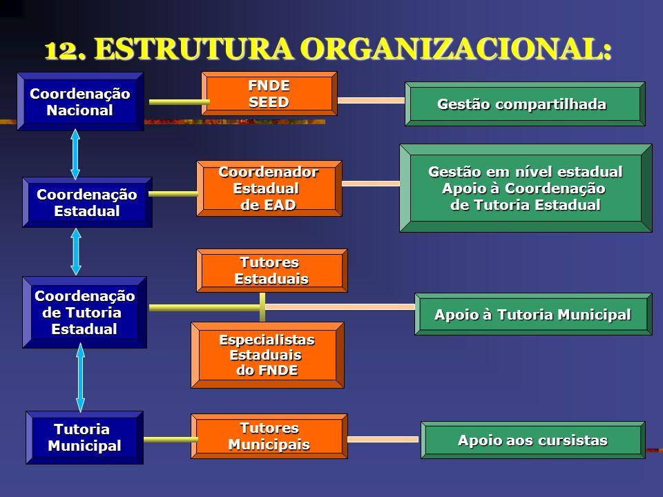 12. ESTRUTURA ORGANIZACIONAL:
