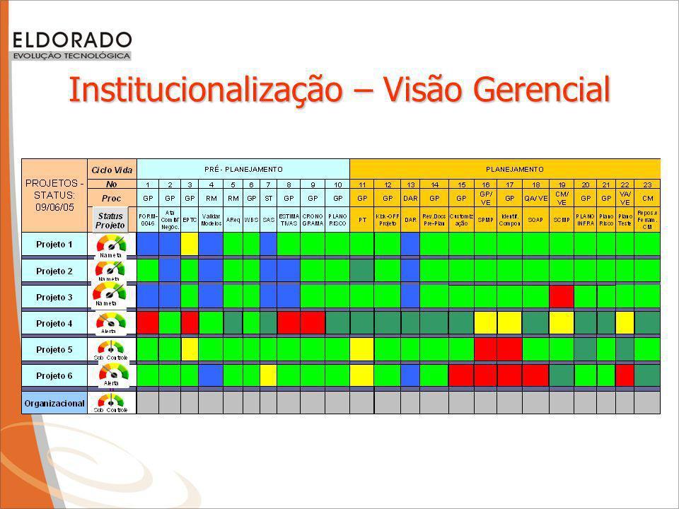 Institucionalização – Visão Gerencial